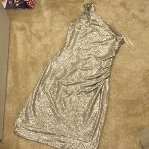 Maggy London Shimmering Dress